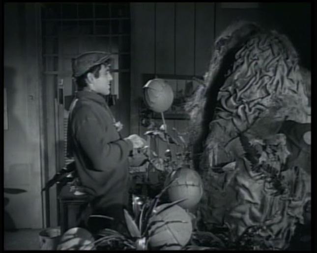 Resultado de imagen de La pequeña tienda de los horrores 1960 imágenes